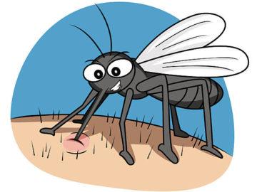Комары кусаются