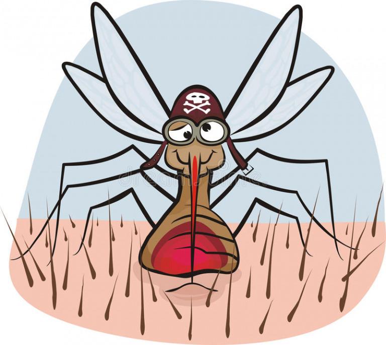 Женщины хуже комаров