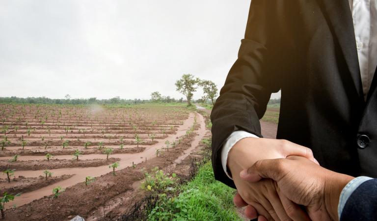 Как составить договор аренды земельного участка?