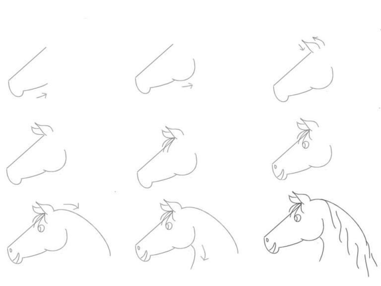 Как просто нарисовать голову лошади?