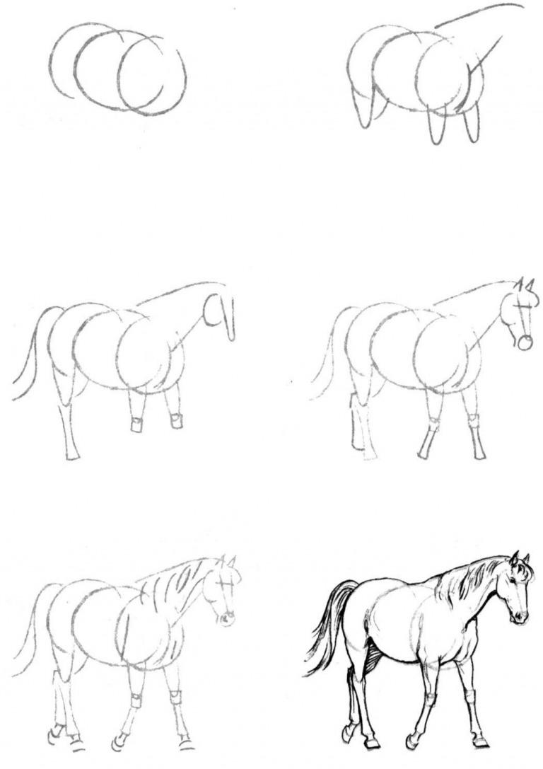 Как просто нарисовать лошадь?