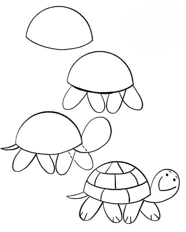 Как просто нарисовать черепаху?