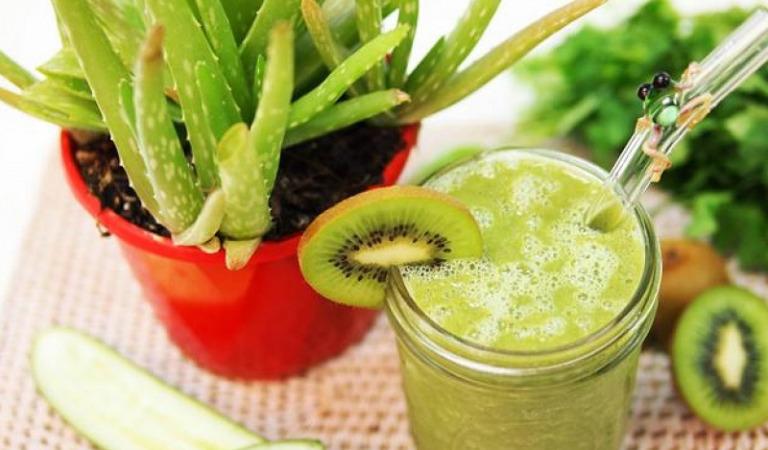 Кактусовый сок — полезные свойства и побочные эффекты